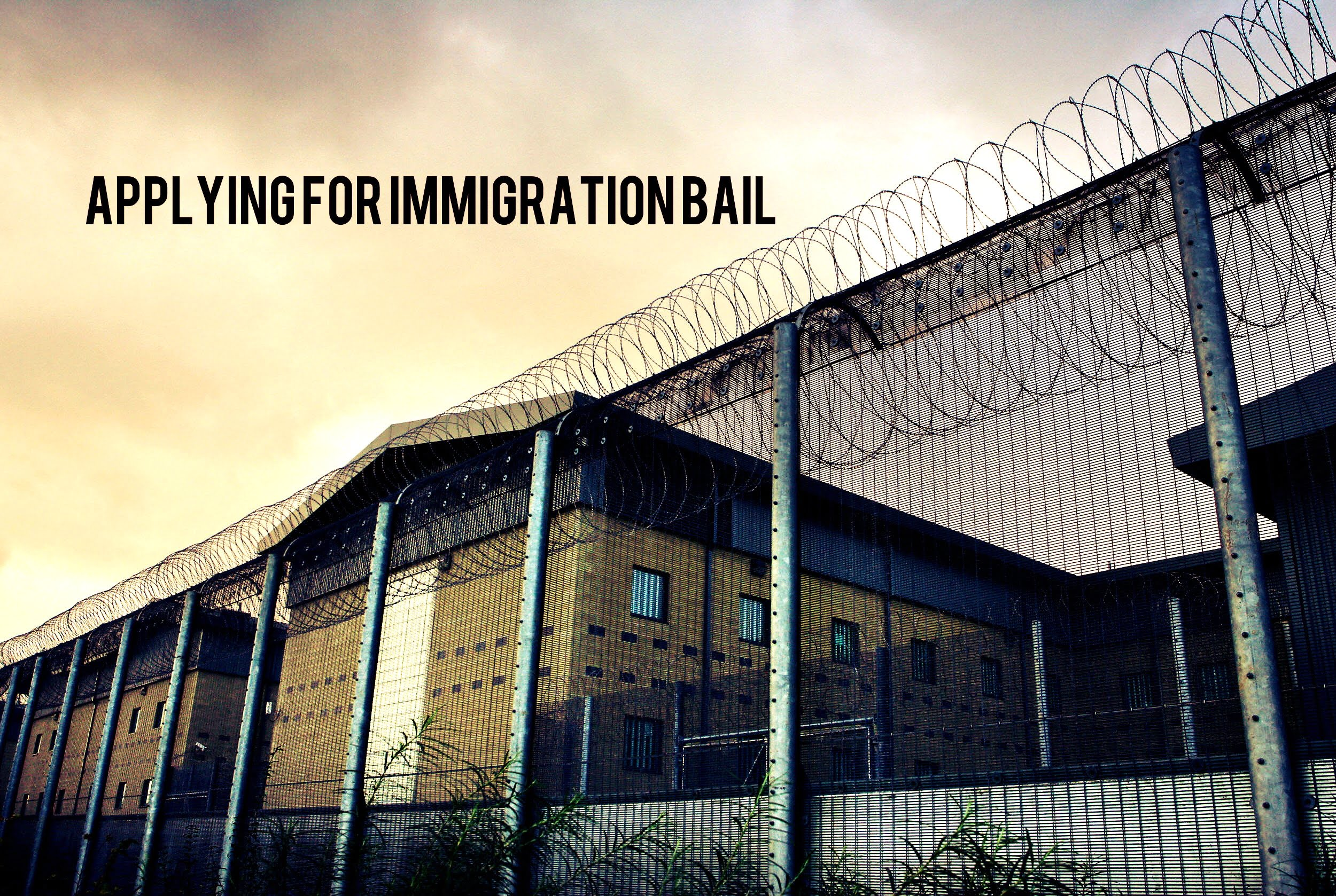 Immigration Bail