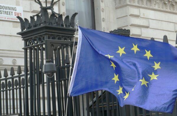 Successful EU Settlement Scheme applications